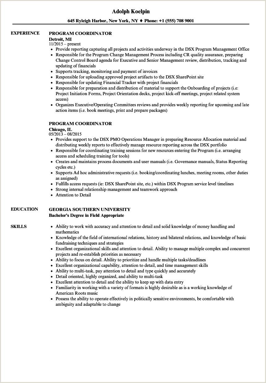 Resume Format For Government Job In India Program Coordinator Resume Samples