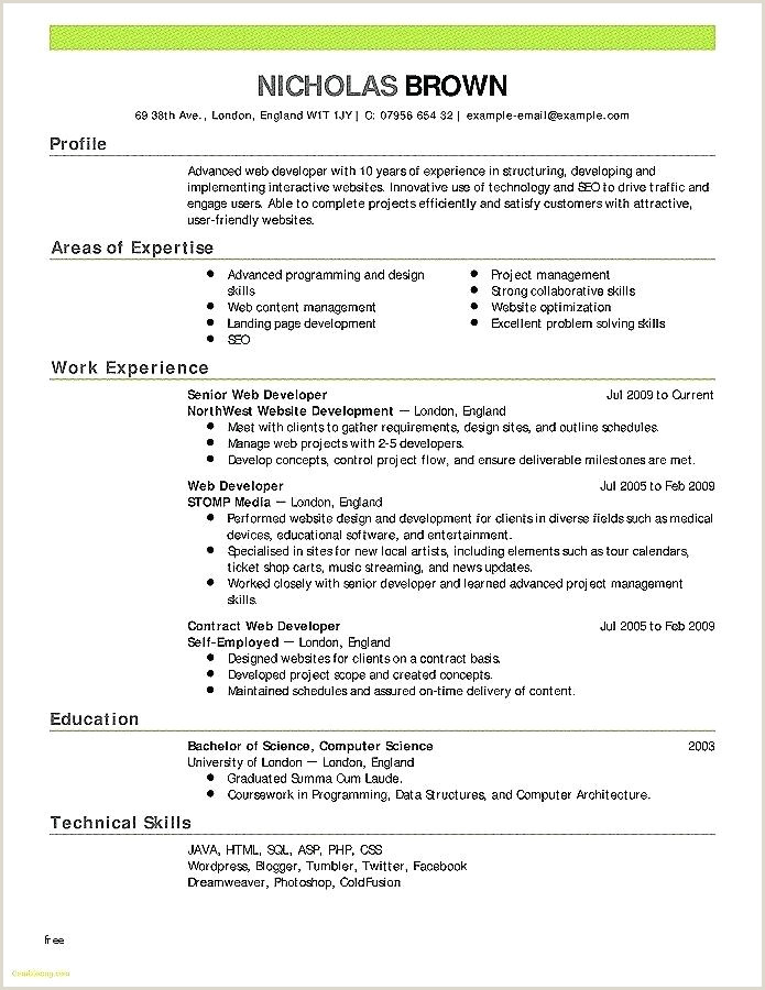 Resume Format For Government Job Philippines Resume Objective For Government Job – Paknts