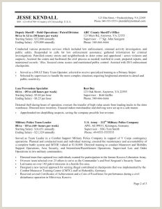 Resume Format For Government Job Philippines Resume Samples Government Jobs Valid New For Job College