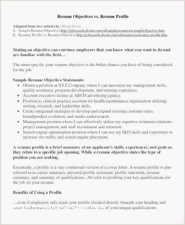 Resume Format For Govt Job 69 Government Resume Examples