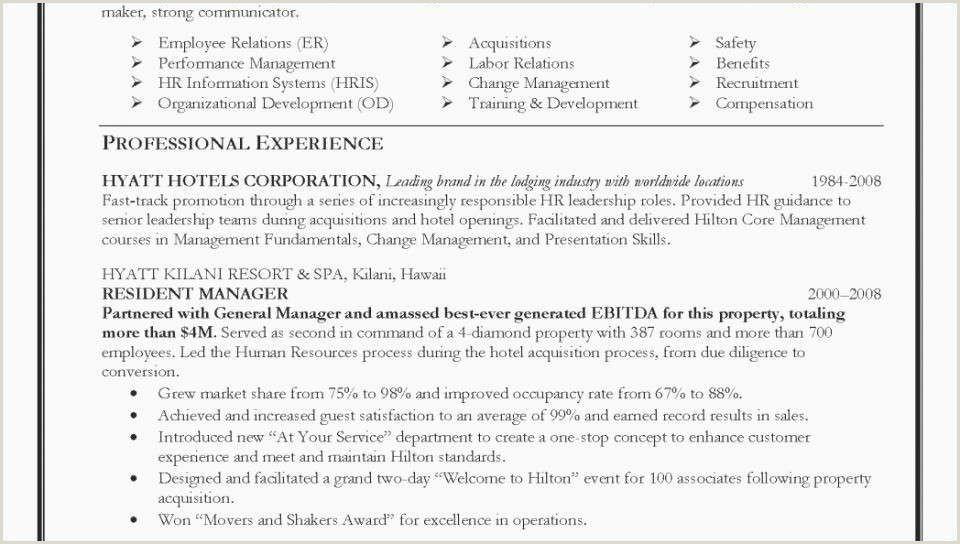 Resume Format For Govt Job Government Job Resume Format Professional Government Resume