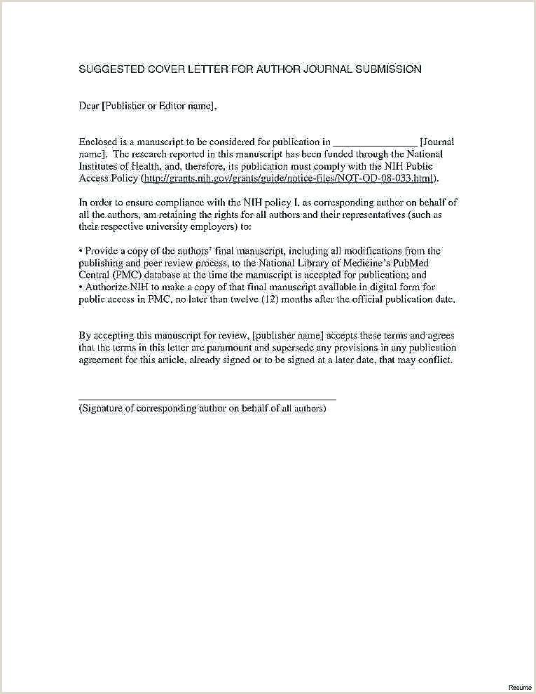 Resume format for Govt Job Official Resume Template