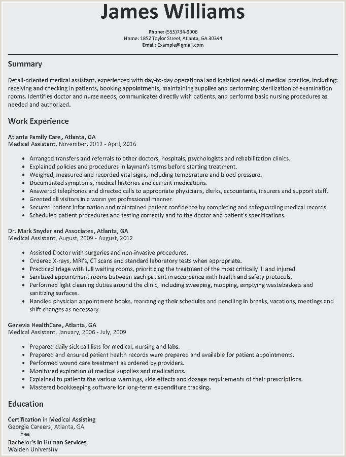 Healthcare Resume Template Professional Healthcare Executive