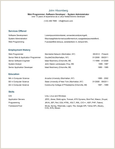 Resume Format For Job Application First Time 30 Basic Resume Templates