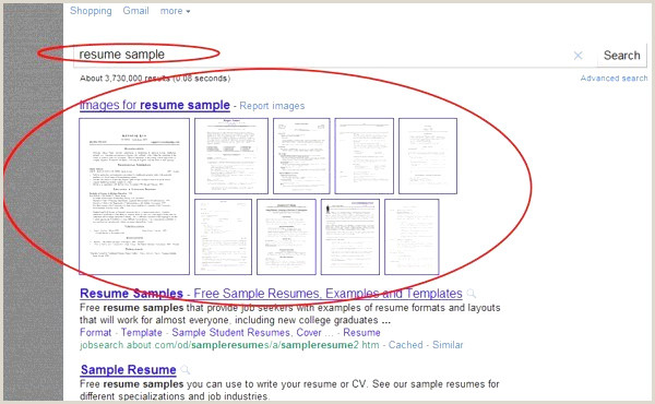 Qapa Cv Exemple Free Apa format Template New Pdf Resume