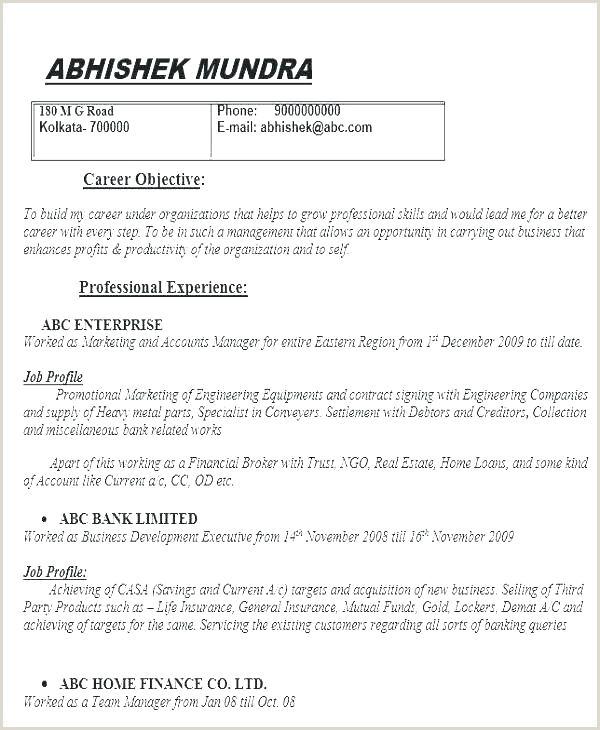 Resume Format For Job Blank Sample Resume Pdf