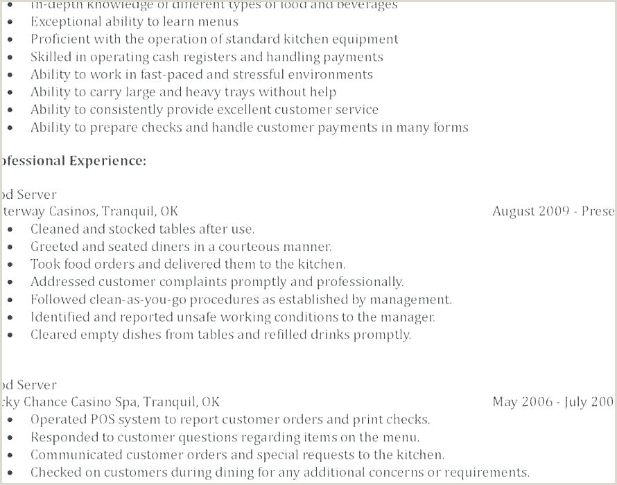 Resume format for Job Blank Standard Cv Template