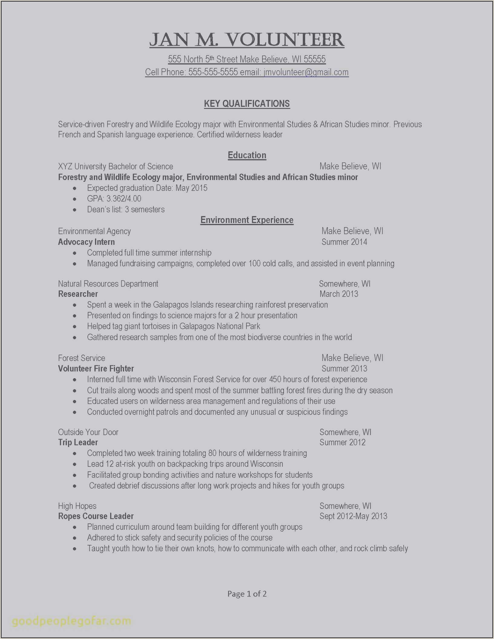 Resume Format For Job Declaration Privacy Statement Template