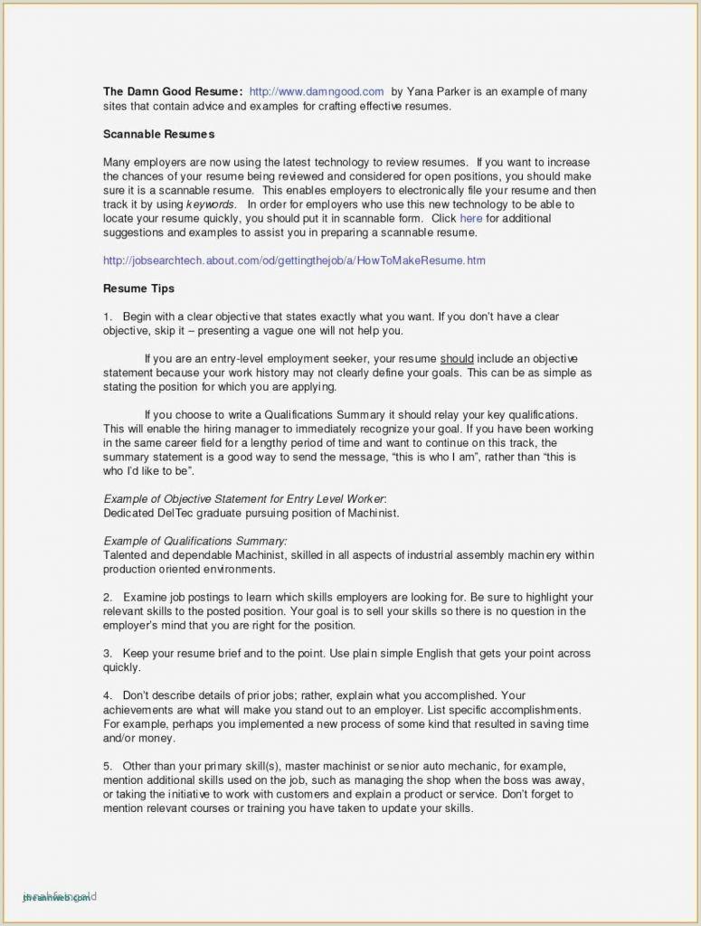 Resume Format For Job Declaration Sample Resume Declaration Format Valid Resume Personal