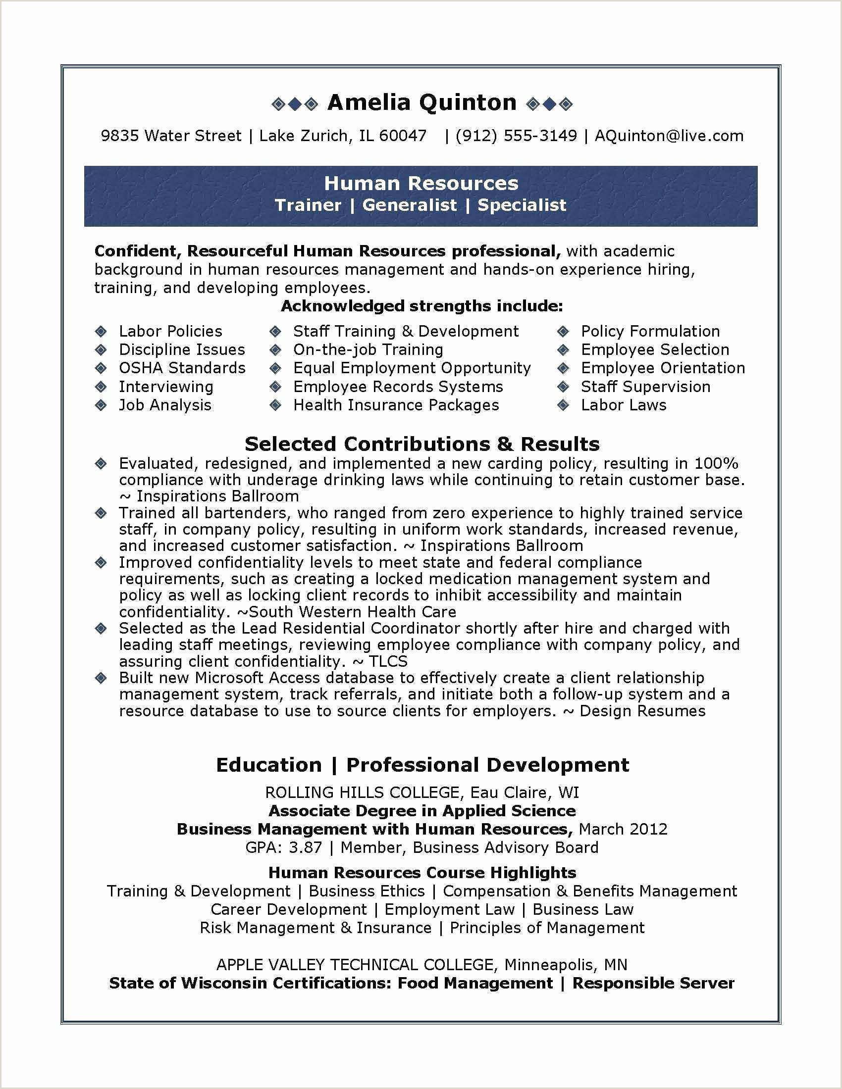 Resume Format For Job Easy Simple Professional Resume Best Simple Job Resume Free Cv