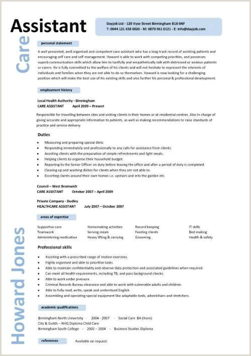 Resume format for Job Engineering Caregiver Professional Resume Templates