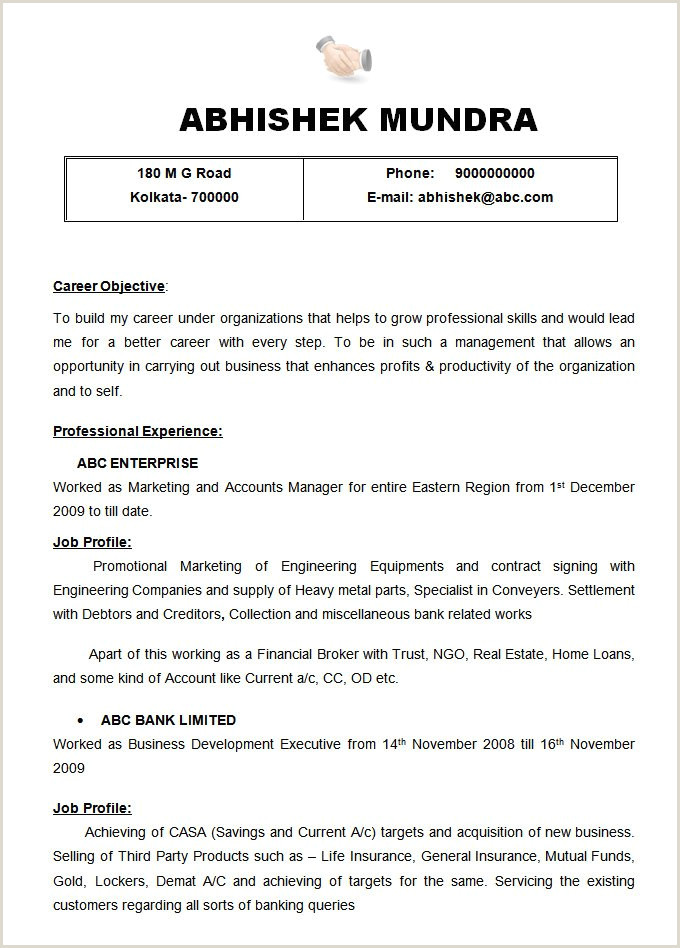 Resume format for Job Experience 47 Best Resume formats Pdf Doc