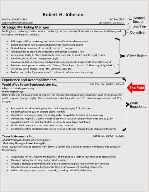 Resume format for Job Experience Career Blog Resume