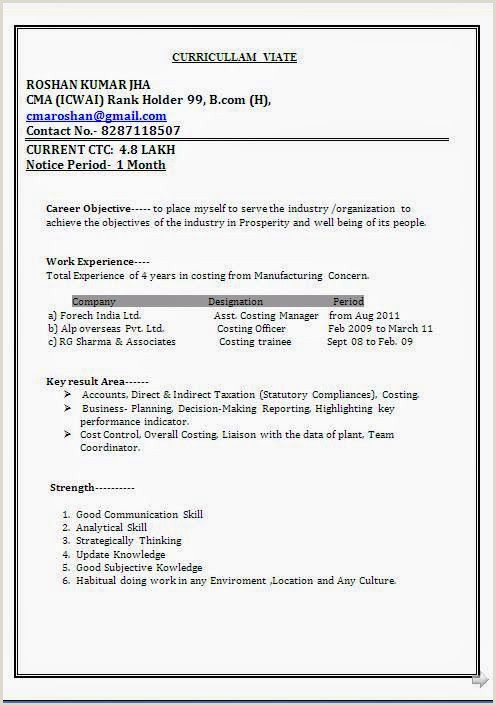 Resume format for Job Experience Pdf Curriculum Vitae Word format Sample Template