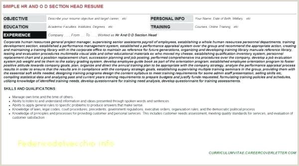 Resume format for Job Fair Career Flyer Template – Grupofive