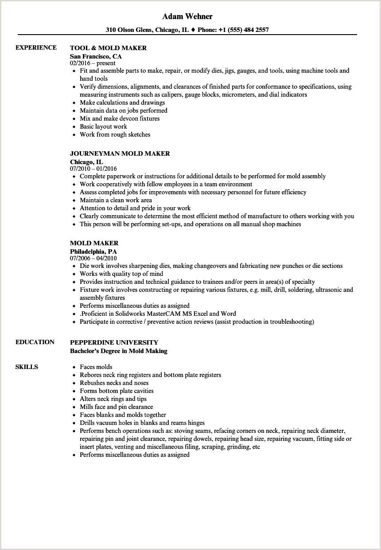 Resume Format For Job Holders Mold Maker Resume Samples
