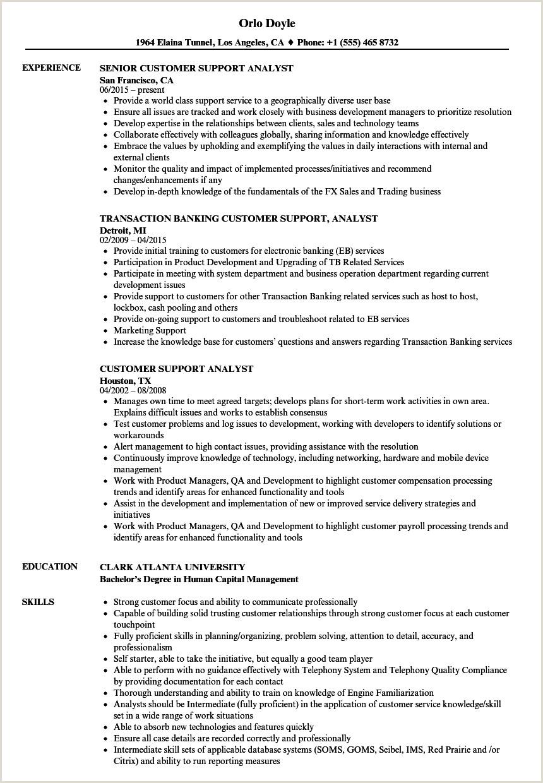 Resume format for Job Hoppers Customer Support Analyst Resume Samples