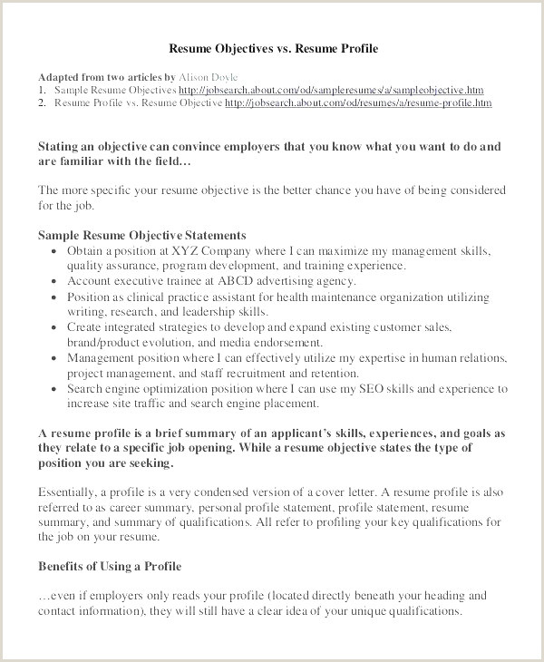 Cv Francais Nouveau Part 142 Resume Cover Letter Sample