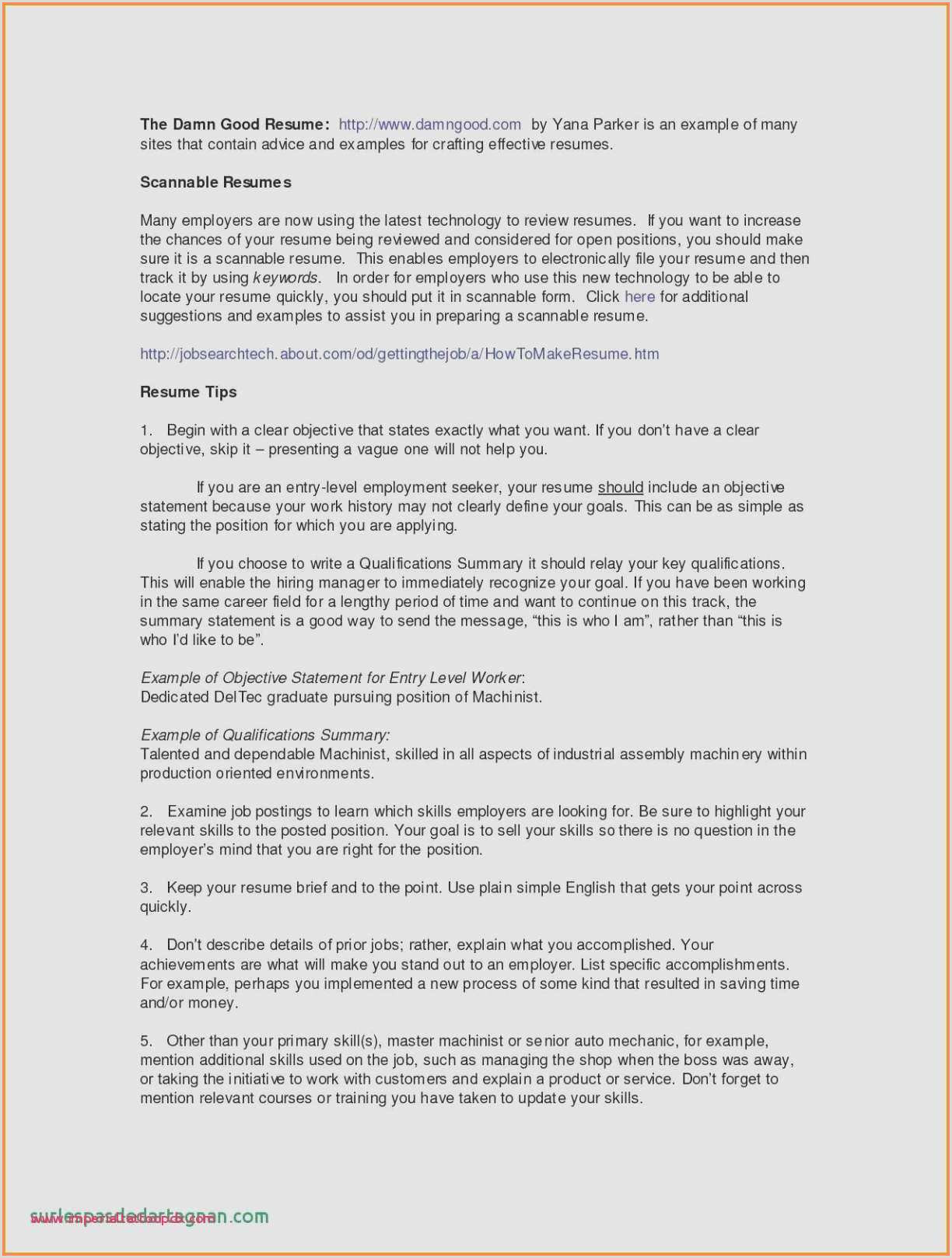 No Experience Resume Template Professional Cv Template