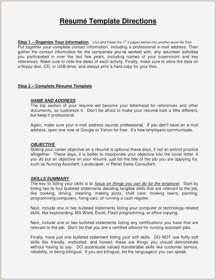 Resume format for Job Sales 100 Free Usable Resume Templates