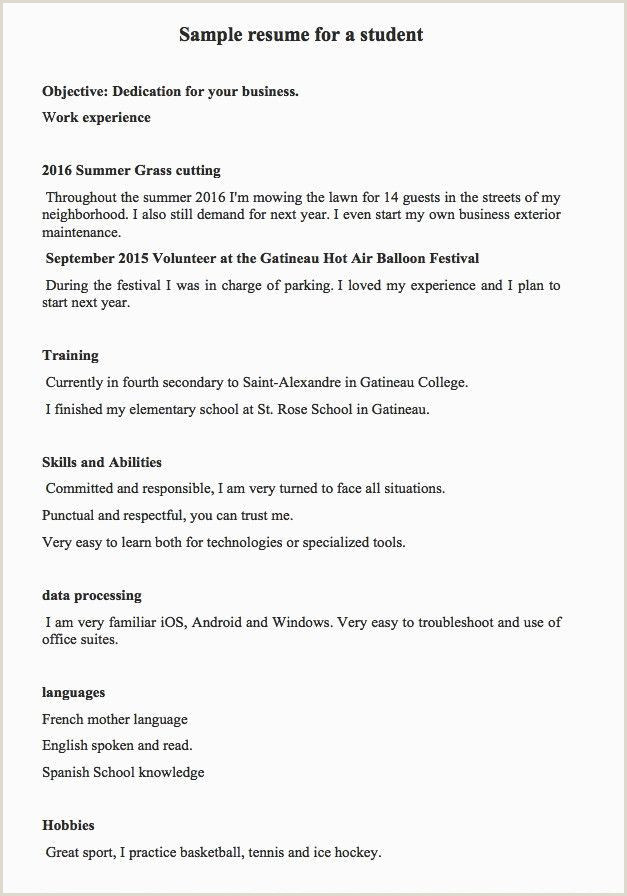 Windows Resume Template Professional Hobbies In Resume
