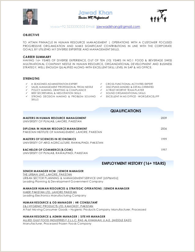 25 Sample Resume formats Word