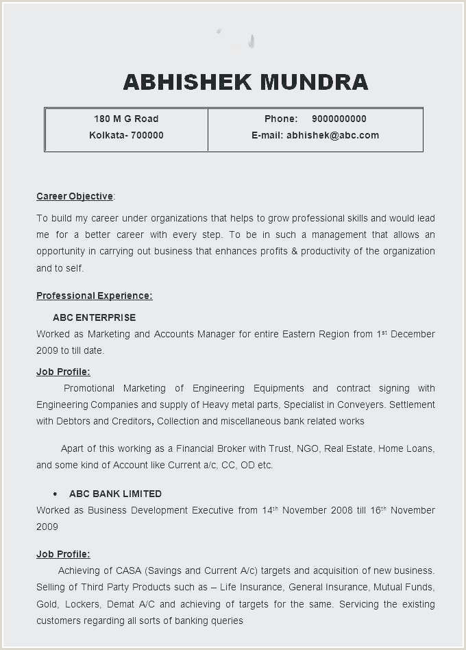Beautiful Resume for Faculty In Engineering College