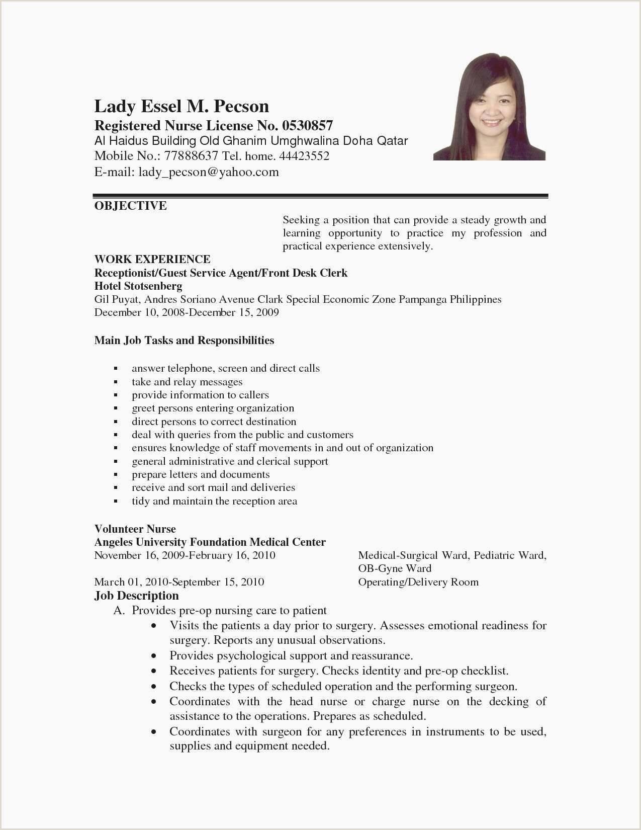 Resume format for No Job Experience 41 Simple format De Cv Xenakisworld