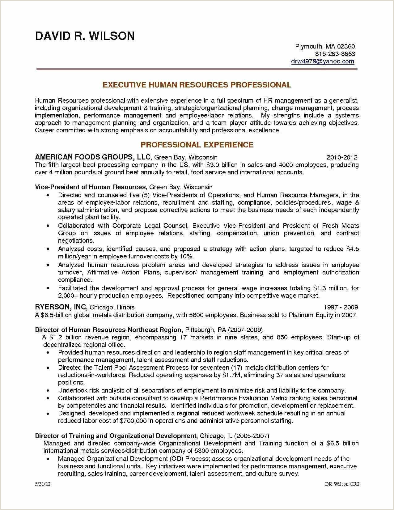 Resume format for No Job Experience Non Experienced Resume Examples sofasdocsurvey