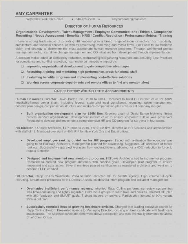 Resume format for Older Job Seekers 67 Best S Executive Recruiter Resume Examples