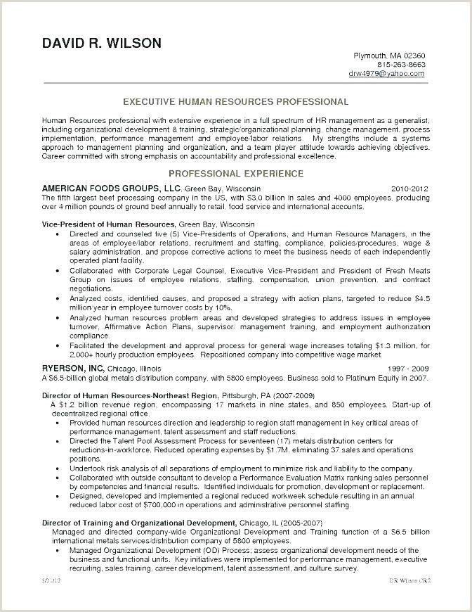 Resume format for Overseas Job Resume Examples for Servers – Wikirian