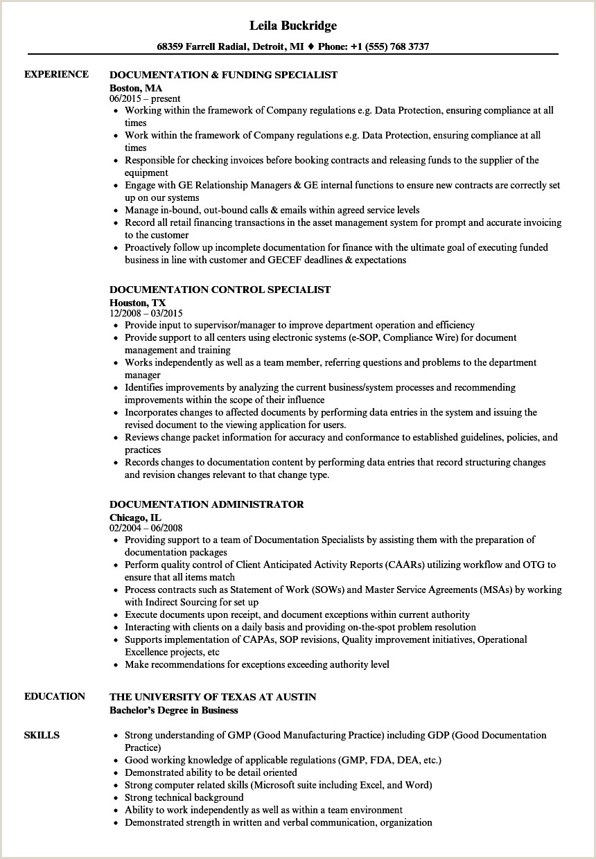 Documentation Resume Samples