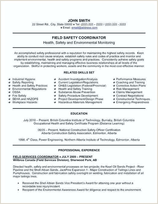 construction resume samples – airexpresscarrier