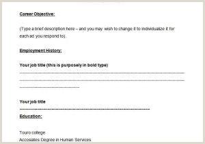 Resume Head Line What is Resume Headline Luxury ¢†¶ 48 Resume Title and