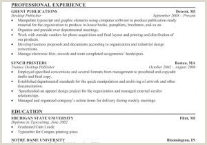 What is Resume Headline Luxury ¢†¶ 48 Resume Title and