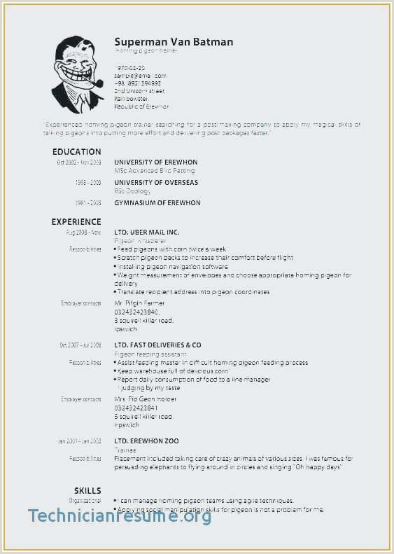 Sample Resume for Fresher Graduate Professional Sample