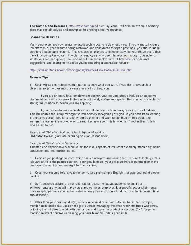 75 Unique s Resume Examples Information Technology