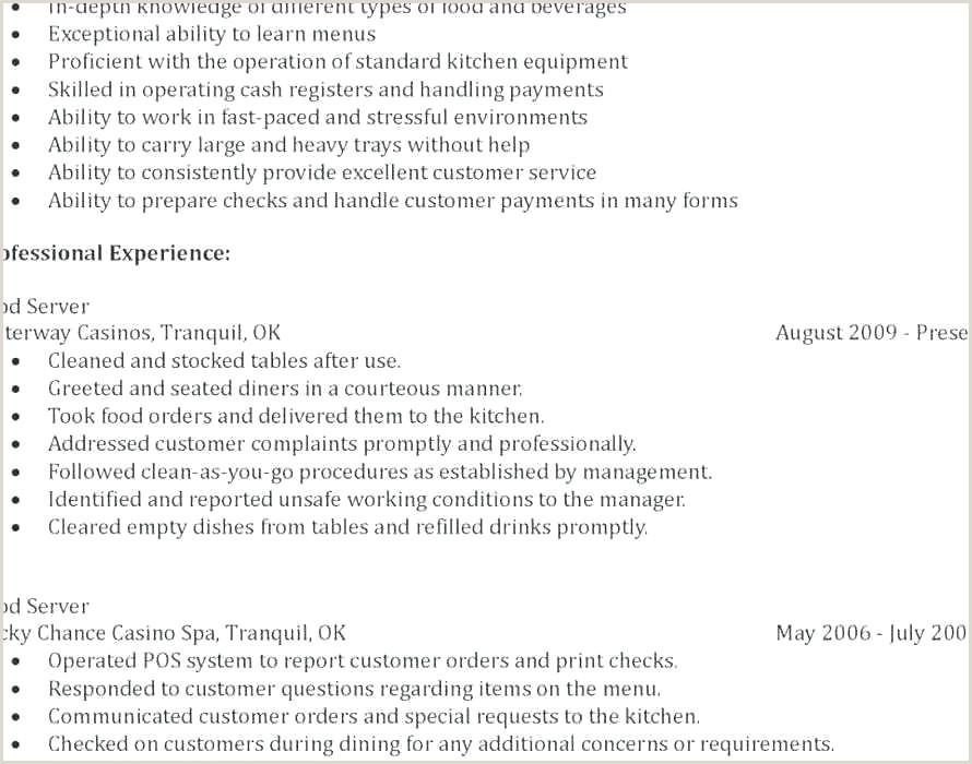 Mba Resume Examples Professional Mba Resume New Resume