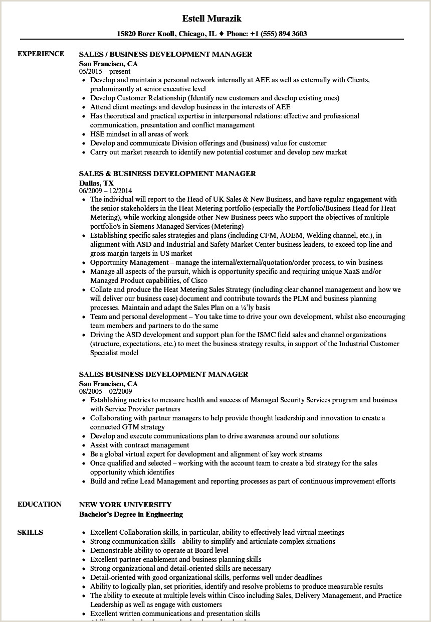Sales Business Development Manager Resume Samples