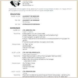 Resume Template In Spanish Resume In Spanish Example School Resume Examples Sample Band