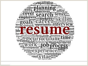 Resume Writing Business Plan Resumes""