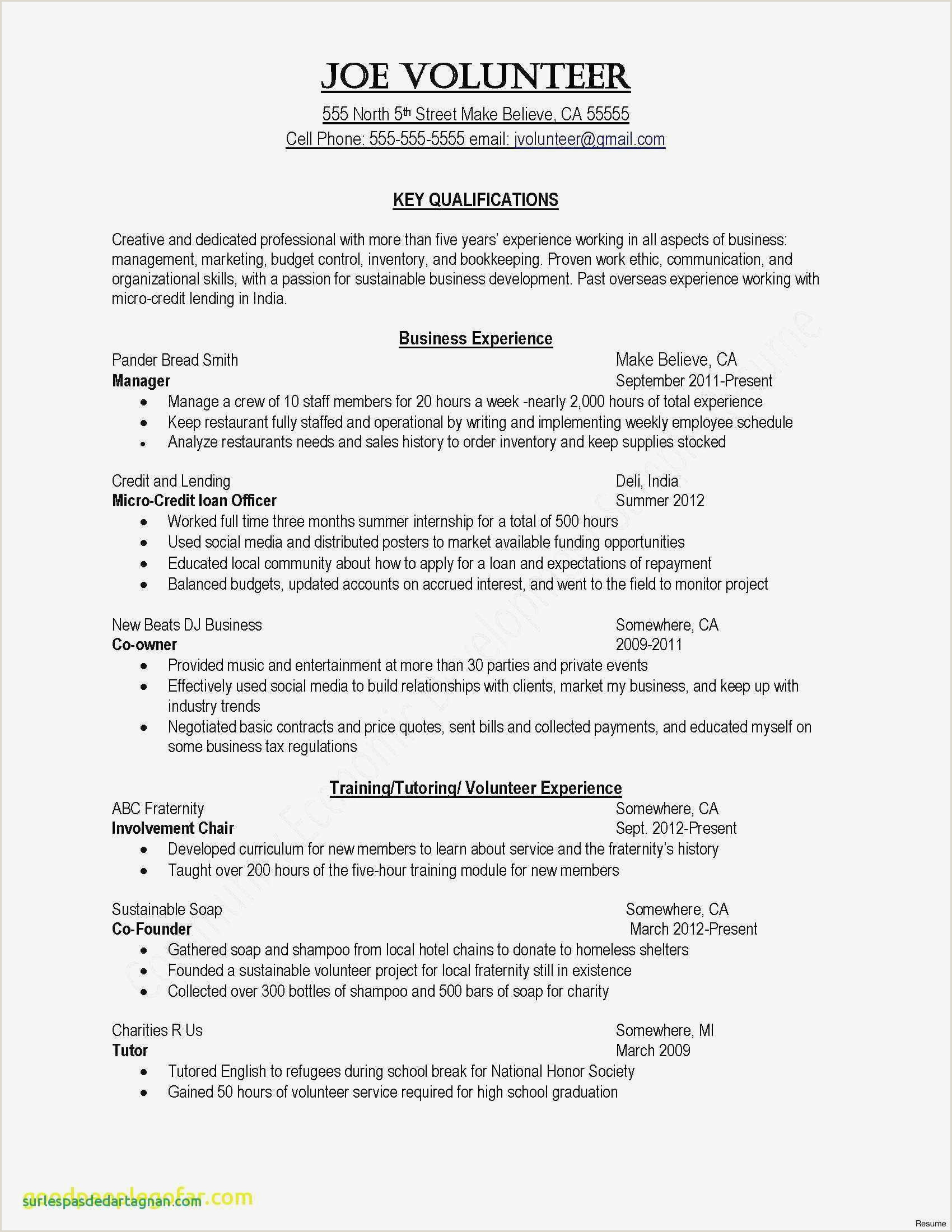 Startup Business Plan Template Word Caquetapositivo
