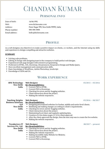 Art Design Resume Samples from Real Professionals Who got