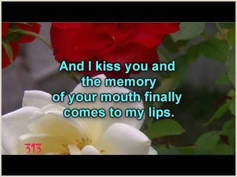Videos matching Romantic Poem Love letter by No¢mane