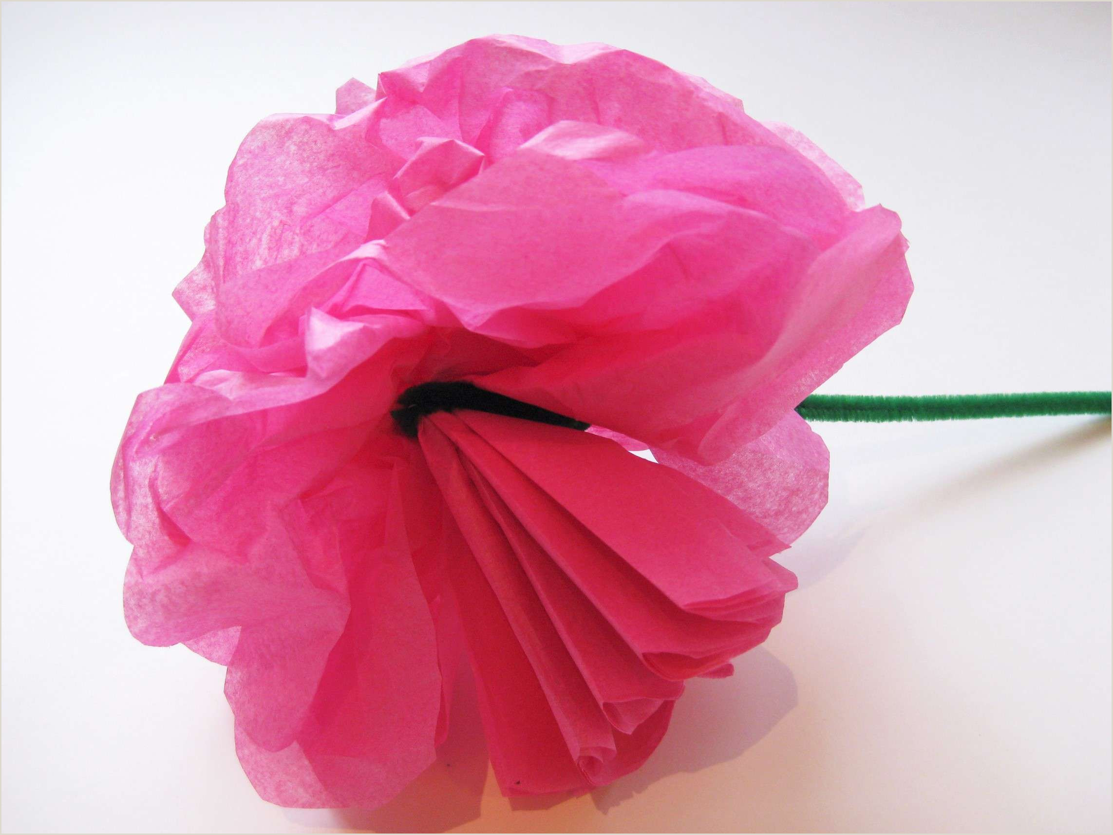 Rose Paper Flower Template Simple Steps to Craft Tissue Paper Flowers