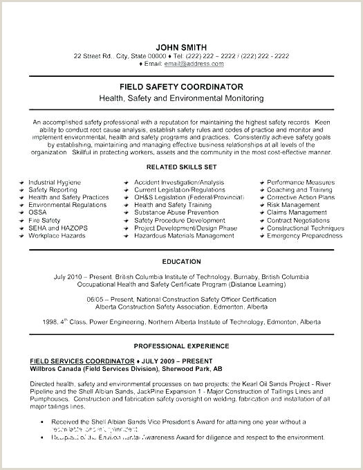 Safety Officer Fresher Cv format Most Professional Resume Template