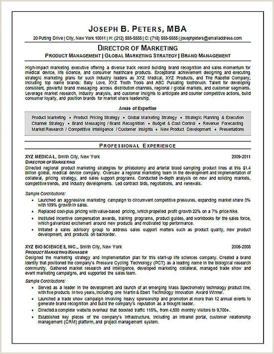 Sales and Marketing Resumes Examples Director Of Marketing Resume Examples