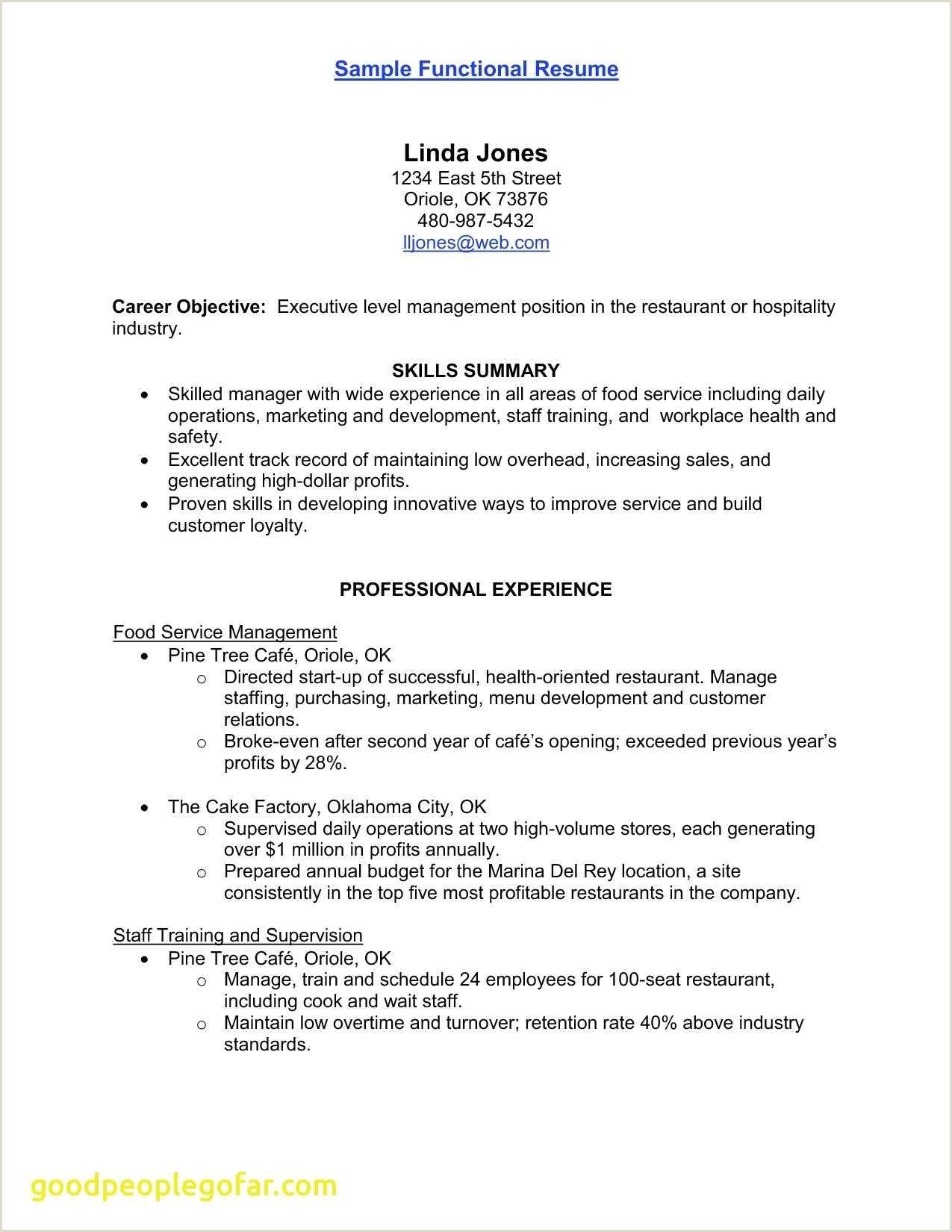 Sales and Marketing Resumes Examples Elegant Marketing Resume Summary