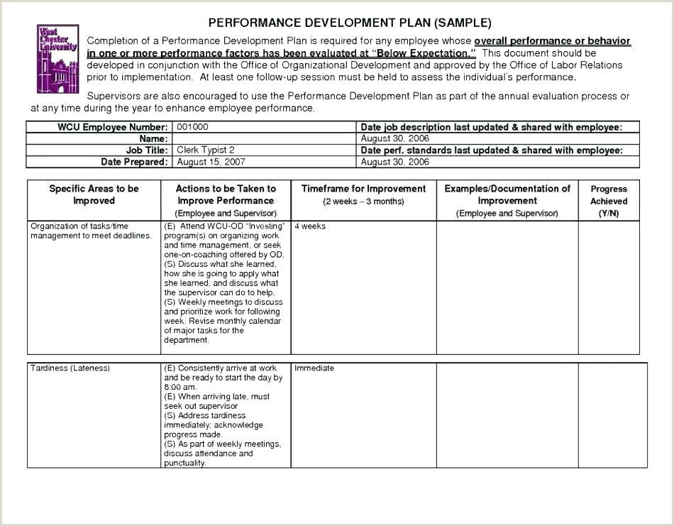 Sales Compensation Plan Template Excel Employee Bonus Plan Template Luxury Referral Program