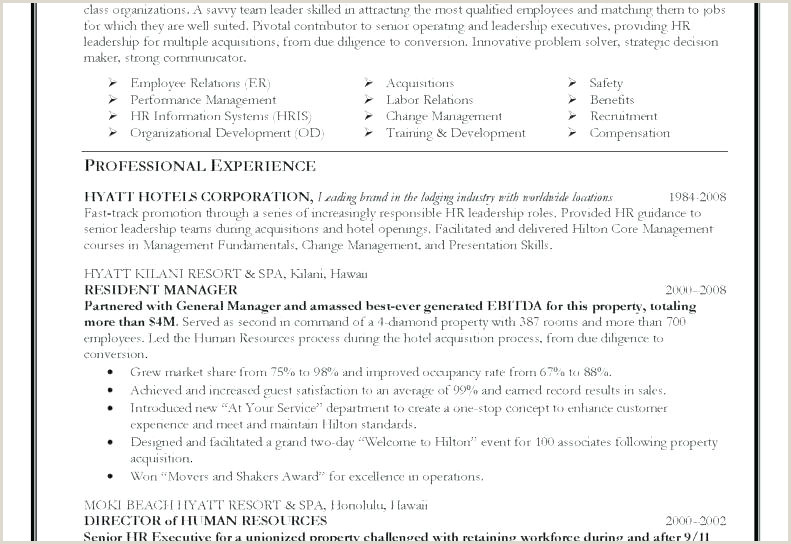 Sales Manager Job Description Resume It Manager Resume Template